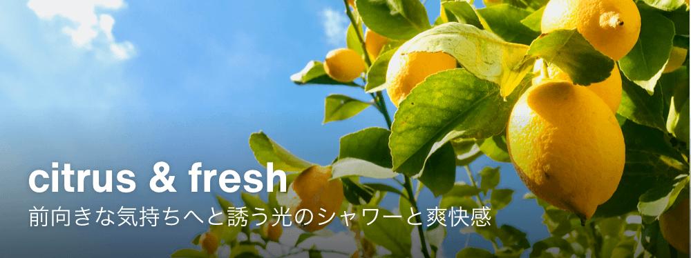 citrus & fresh 前向きな気持ちへと誘う光のシャワーと爽快感